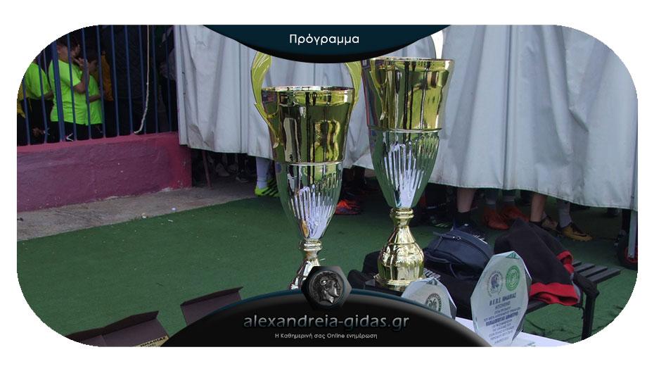 Πλατύ – Ροδοχώρι και Ακαδημία Τρικάλων – Μ. Αλέξανδρος Τρικάλων στα ημιτελικά του Κυπέλλου Ημαθίας