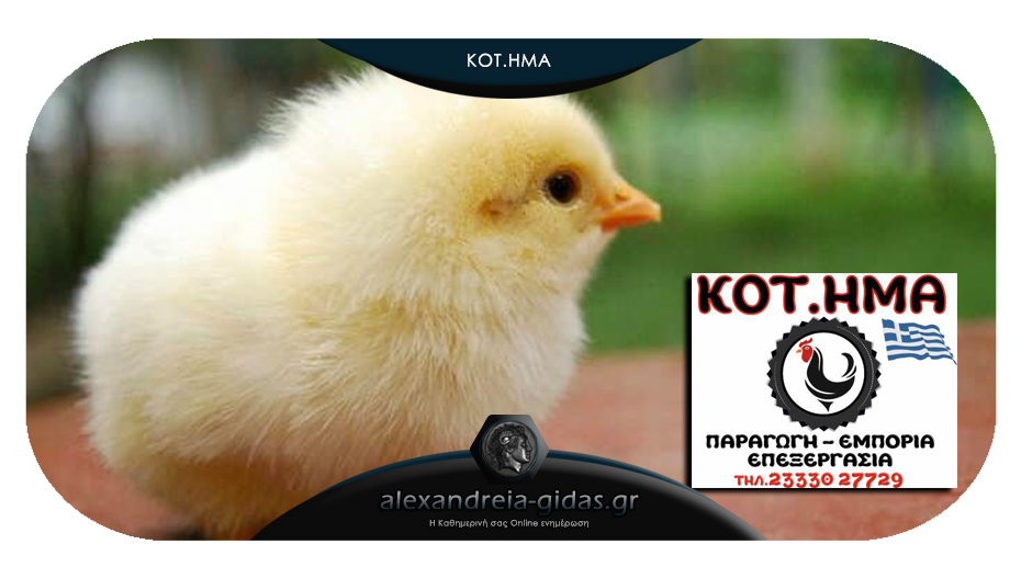 Με σύνθημα «Κύριο μέλημά μας ΕΣΕΙΣ» το ΚΟΤΗΜΑ σας υποδέχεται στην Αλεξάνδρεια με ΕΛΛΗΝΙΚΑ κοτόπουλα!