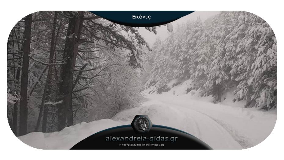 Απίστευτο χιόνι στο Σέλι – δεν θυμίζει σε τίποτα Άνοιξη!