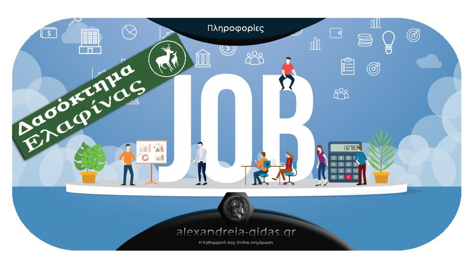 Ζητείται υπάλληλος για μόνιμη απασχόληση στα Καυσόξυλα ΕΛΑΦΙΝΑΣ