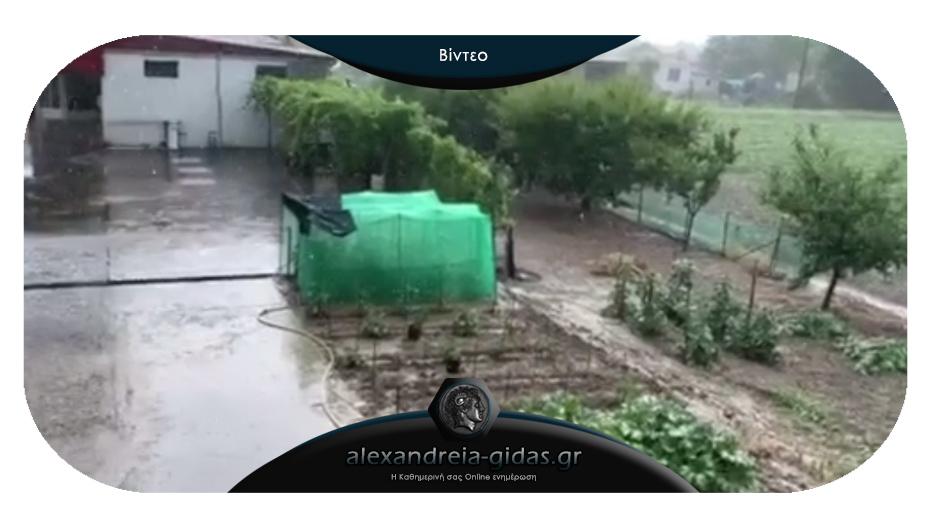 Χαλάζι έπληξε το μεσημέρι περιοχές του δήμου Αλεξάνδρειας