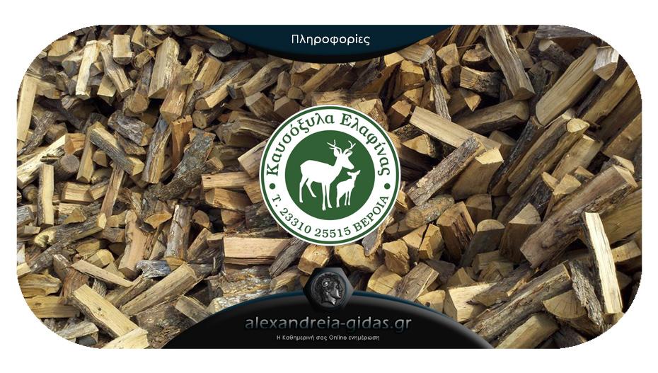 Μην περιμένετε τον χειμώνα: Προμηθευτείτε από τώρα ξύλα από τα «Καυσόξυλα ΕΛΑΦΙΝΑΣ»!