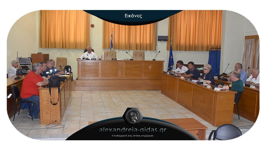 Συνεδρίασε για τις πυρκαγιές η Πολιτική Προστασία του δήμου Αλεξάνδρειας