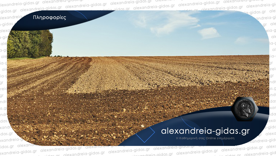 Ζητείται χωράφι για επαγγελματική χρήση στην περιοχή της Αλεξάνδρειας