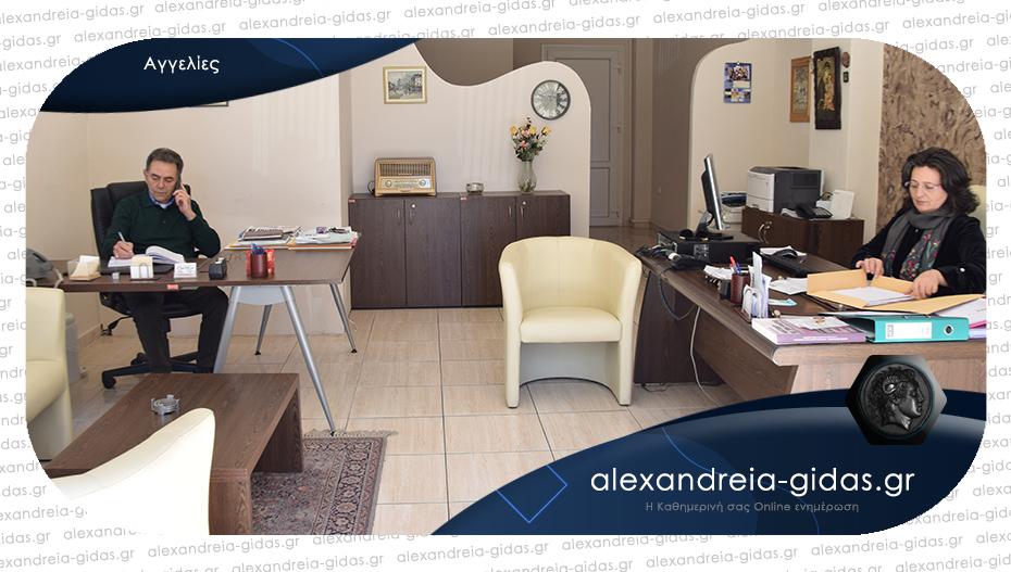 Μεσιτικό Γραφείο ΝΟΠΗ ΜΕΤΑΞΑ στην Αλεξάνδρεια: Αγγελίες για τον δήμο Αλεξάνδρειας!