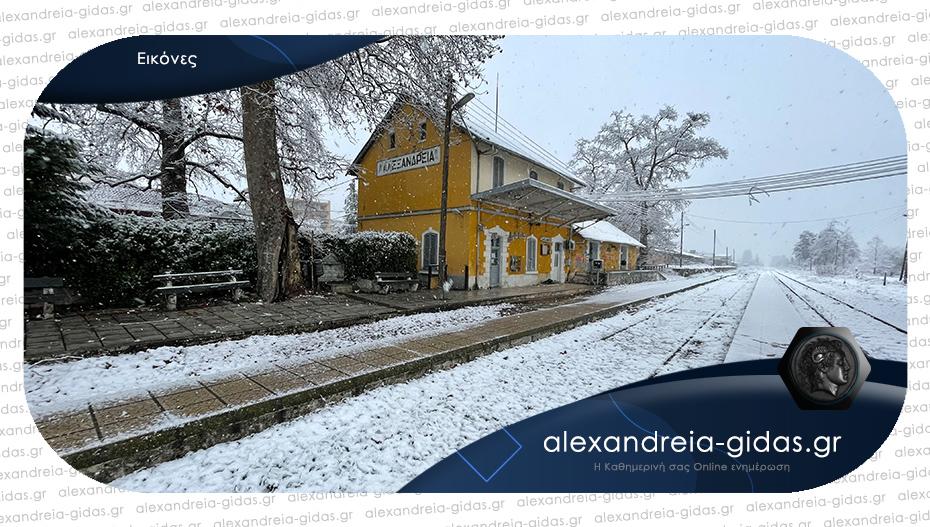 Δείτε τη χιονισμένη Αλεξάνδρεια!