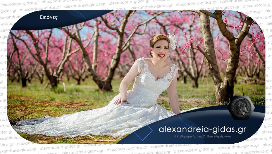 Η νύφη που βρήκε πόζα σε χωράφι της Ημαθίας δίπλα στις ανθισμένες ροδακινιές!