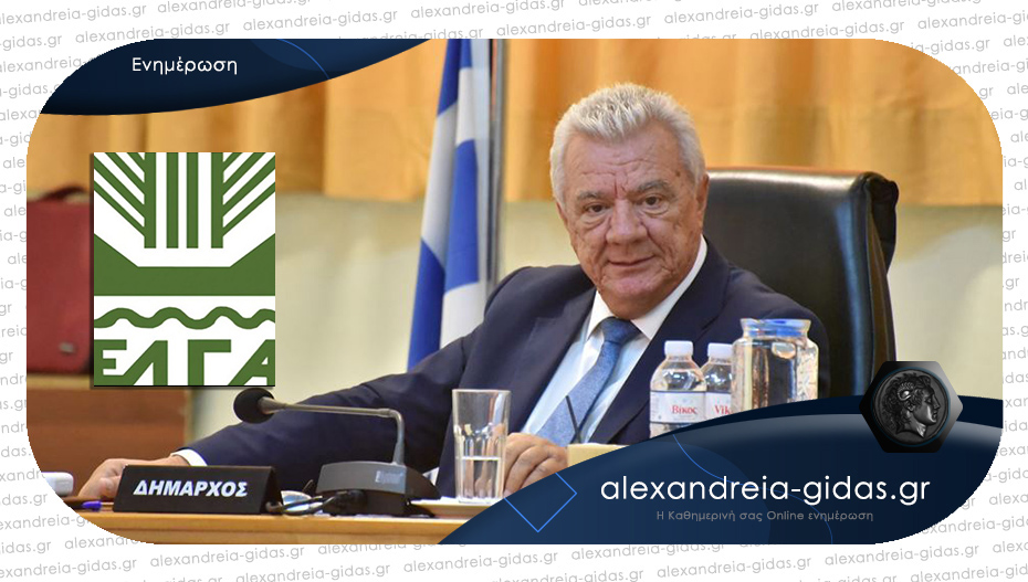 Άμεση αντίδραση του δημάρχου Αλεξάνδρειας για το χαλάζι – επιστολή στον ΕΛΓΑ