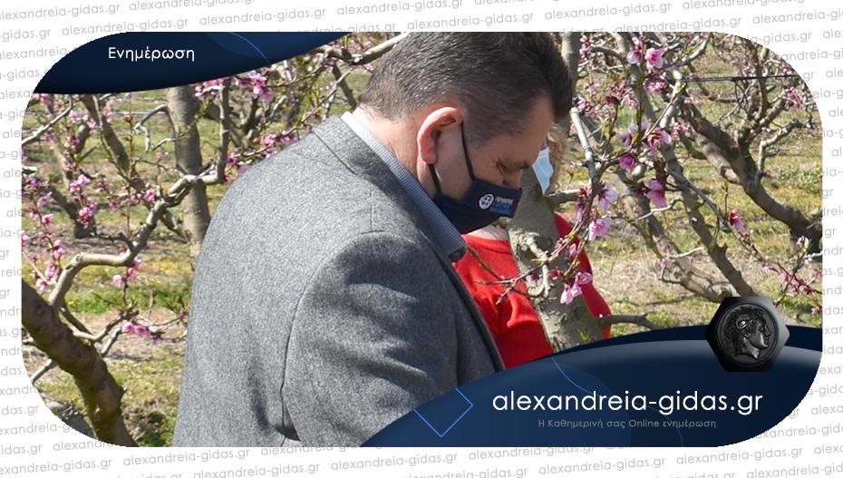 Επικοινωνία K. Καλαϊτζίδη με τον πρόεδρο του ΕΛΓΑ για καταγραφή ζημιών από το χαλάζι στην Ημαθία