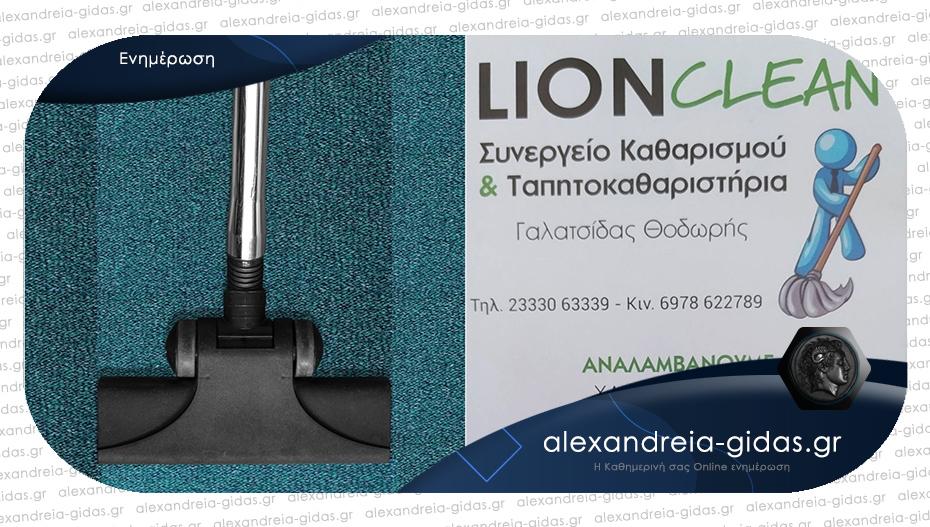 Καθαρίστε και φυλάξτε τα χαλιά σας στην περιοχή της Αλεξάνδρειας με την εγγύηση της LION CLEAN!