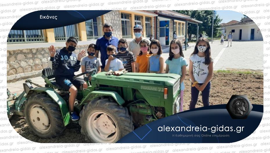 Ομορφαίνουν το σχολείο τους οι μαθητές του Δημοτικού στο Κλειδί
