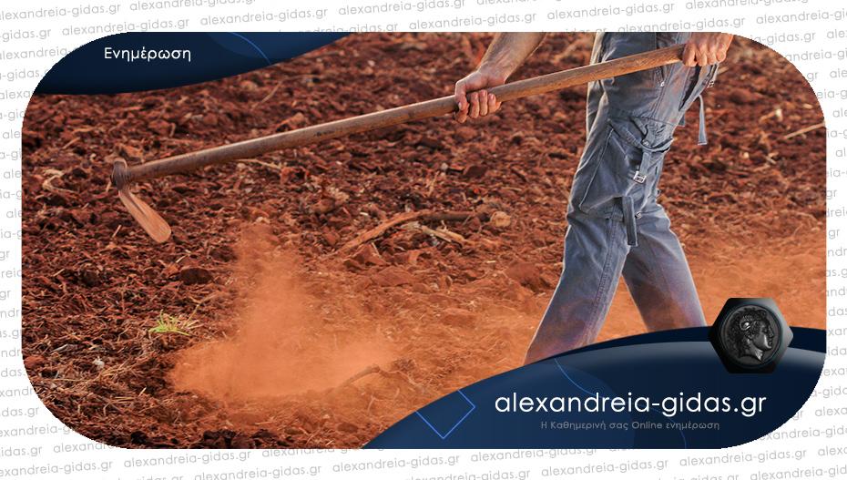 Μετάκληση πολιτών τρίτων χωρών για εποχιακή απασχόληση σε αγροτικές εργασίες