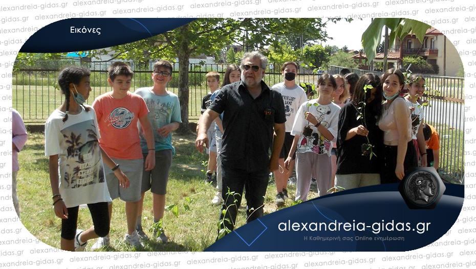 Δεντροφύτευση στο 7ο Δημοτικό Σχολείο Αλεξάνδρειας – μπράβο σε όλους!