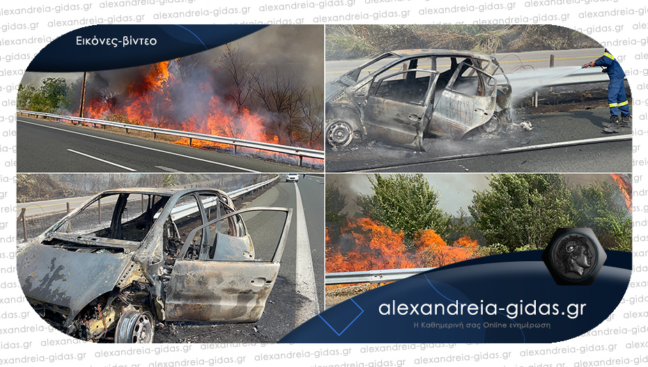 Επί ποδός η πυροσβεστική: Μεγάλη φωτιά στην Εγνατία στο ύψος της Πρασινάδας – δείτε!