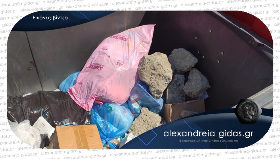 Αναγνώστης: Είδα κάποιον να πετάει πέτρες σε κάδο της Αλεξάνδρειας και του ζήτησα τον λόγο!