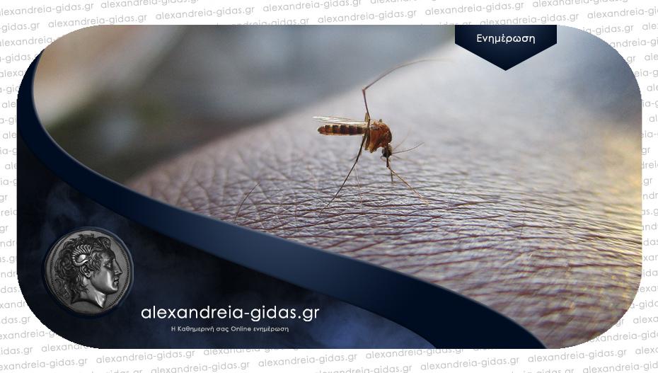 Ψεκασμοί για τα κουνούπια απόψε στην Τριλοφιά του δήμου Αλεξάνδρειας